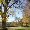 Chateau_de_noirieux_Angers_3